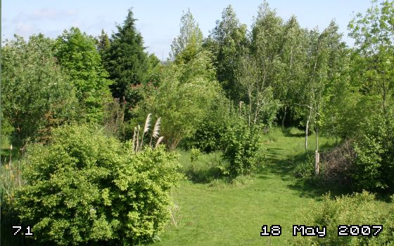 NOV 2007