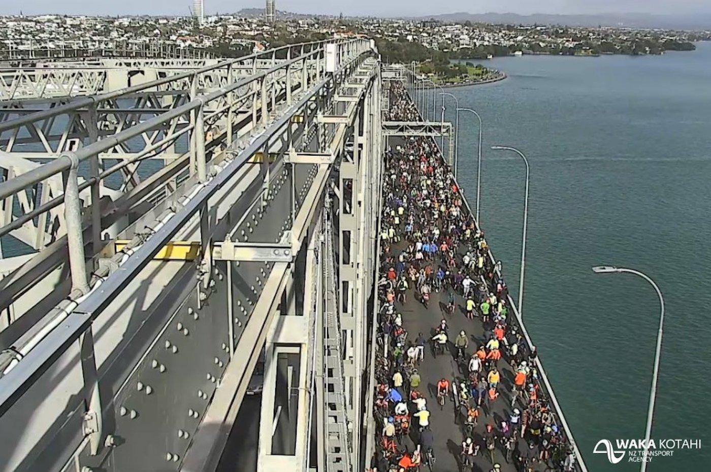 Selfish Road Maggots Cause Mayhem on Harbour Bridge