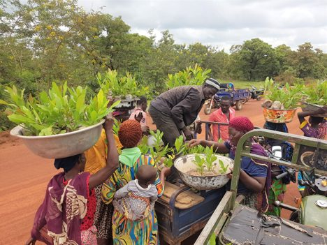 Greening agricultural produce for people and the planet: … the story of a Social Entrepreneur
