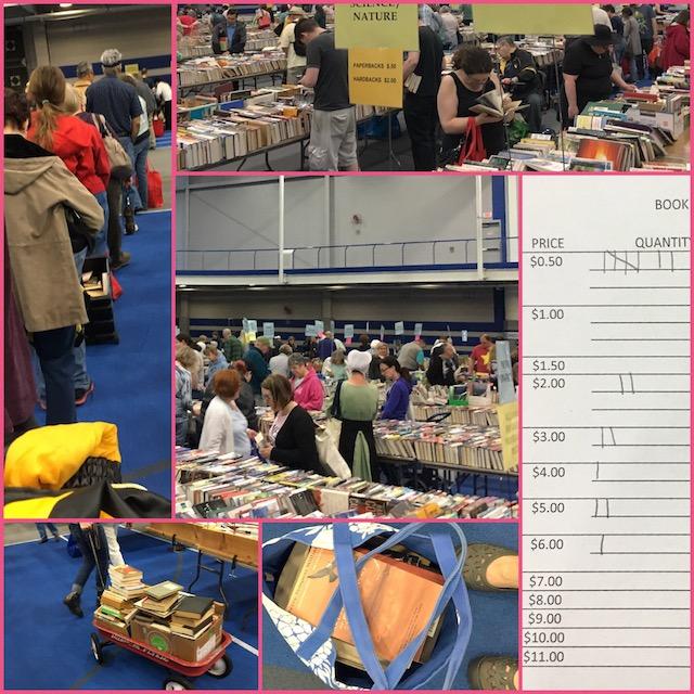 Lancaster Library Book Sale Bookhaul