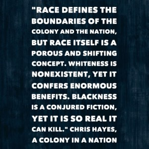 Quote from A Colony in a Nation by Chris Hayes