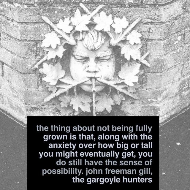 Quote The Gargoyle Hunters by John Freeman Gill