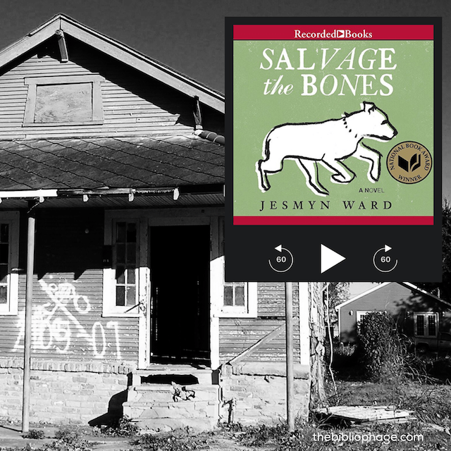 Book Review: Salvage the Bones by Jesmyn Ward