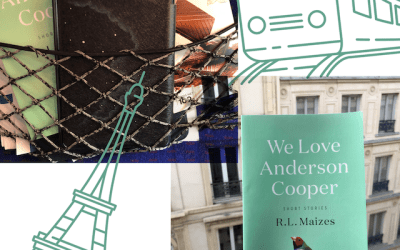 Book Review: We Love Anderson Cooper by R.L. Maizes