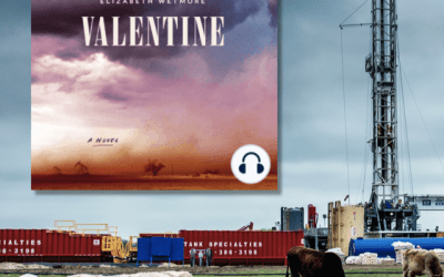 Book Review: Valentine by Elizabeth Wetmore