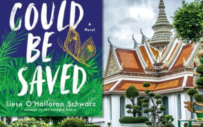 Liese O'Halloran Schwarz: What Could Be Saved—A Genre Spanning Story (Book Review)
