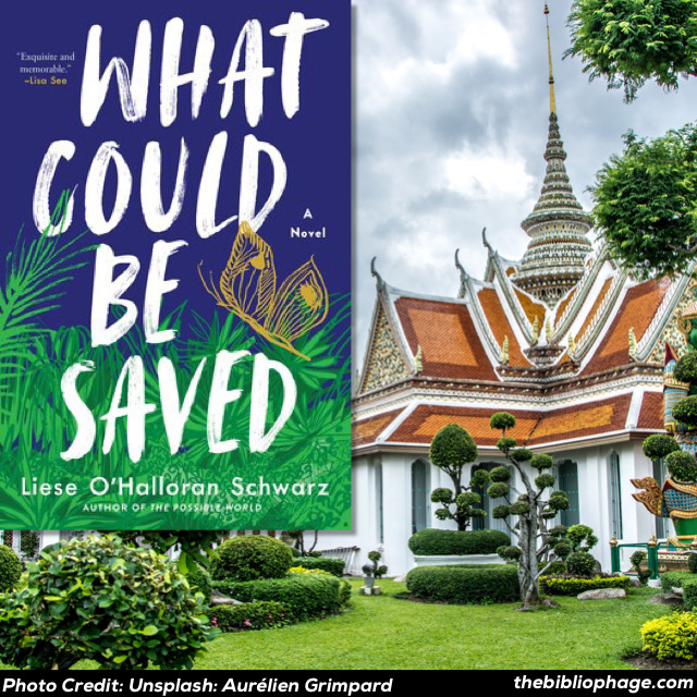 Liese O'Halloran Schwarz: What Could Be Saved