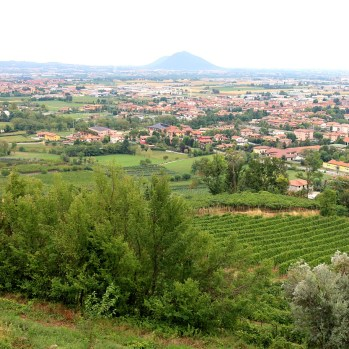 Up into hills & vineyards on way to Lake Iseo