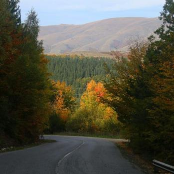 Beautiful autumnal colours glow from the mountainside.