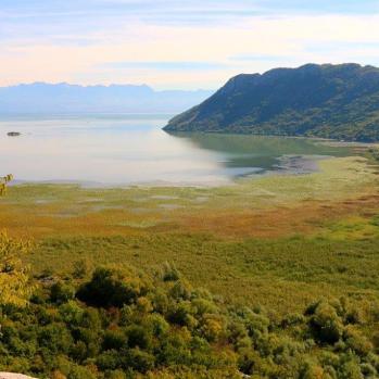 Lake Skadar, near Virpazar, Montenegro.