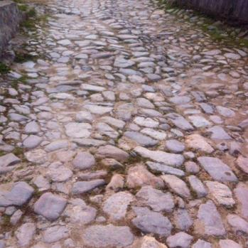 Monster cobbles, the scourge of all bummlers.