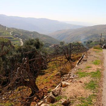 Up high into the mountains en route to the Dead Sea.