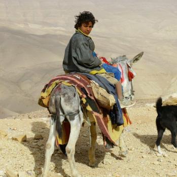 Boy shepherd.