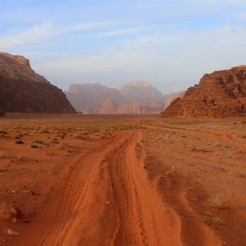 Wadi Rum (high valley) is a valley cut into sandstone and granite rock, and the largest wadi in Jordan.