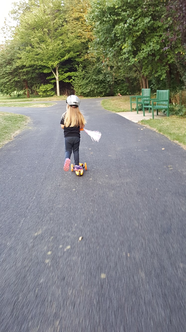bike-path-7