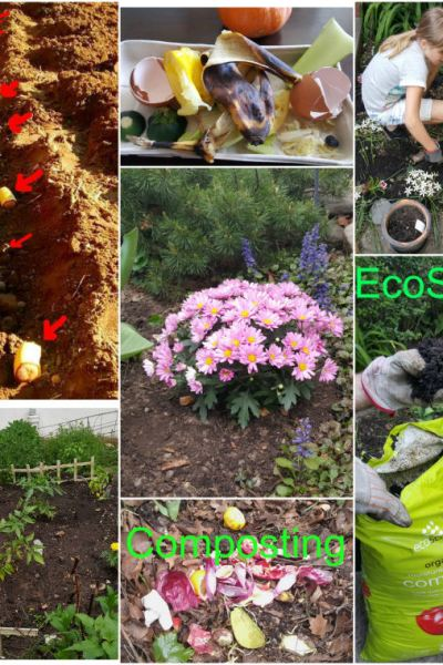 How Composting Can help Environment and Your Garden