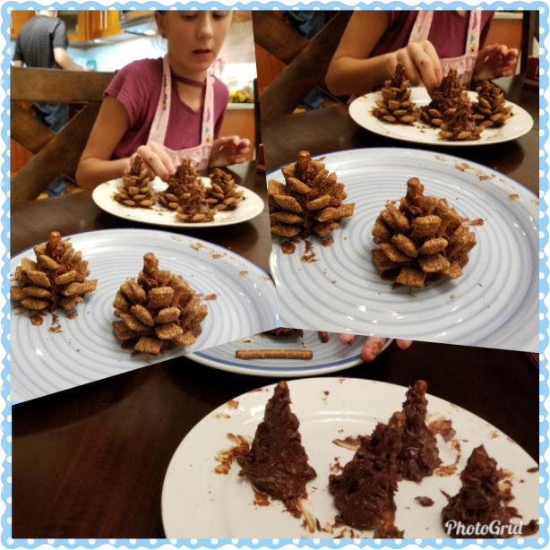 how to make chocolate edible pine cones