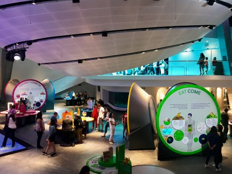 Frost Science Museum - 1 (32)