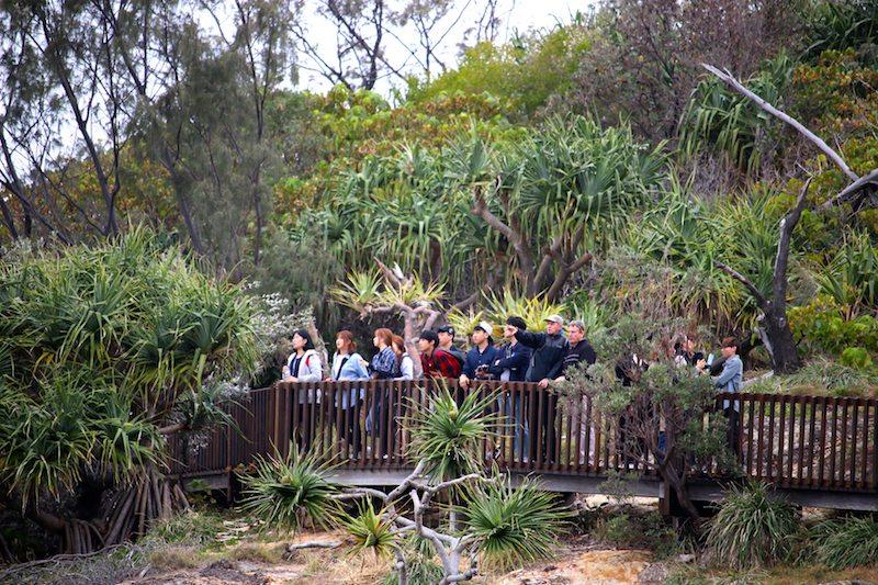 North Stradbroke Island tours from Brisbane