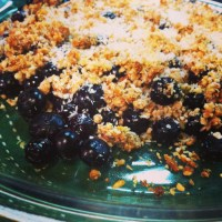 Super Quick & Easy Blueberry Dessert