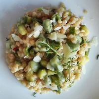 Fregola sarda with fava beans and zucchini