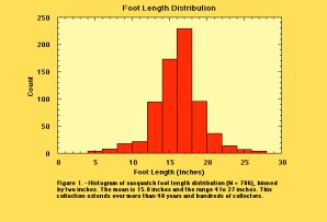 Foot length distribution