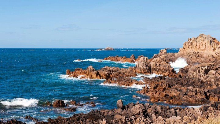 coral reefs in Guernsey