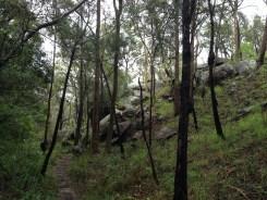 Our hike to Davies Creek