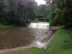 Malanda Falls.