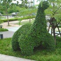 Monday Madness - Dinosaur Frenzy in Khon Kaen