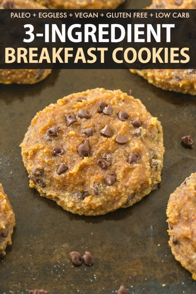 3 Ingredient Paleo Breakfast Cookies