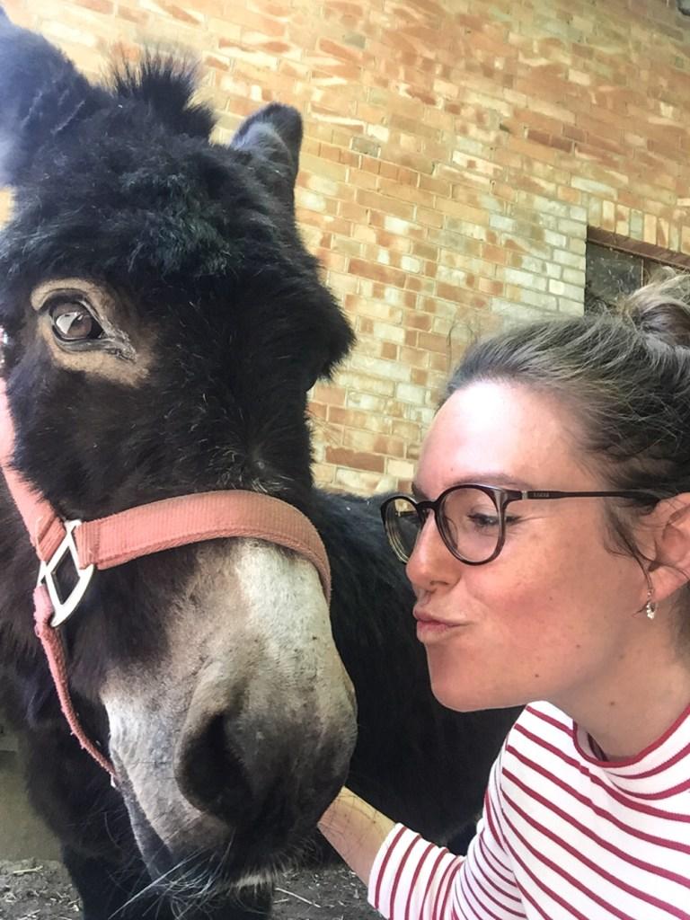 Donkey Selfie Farm Life