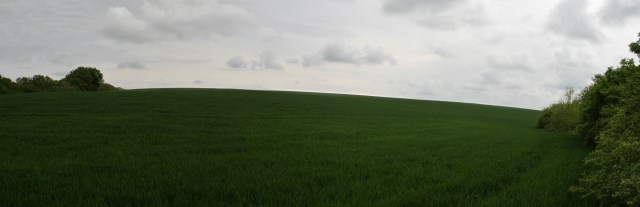 Panorama fgh