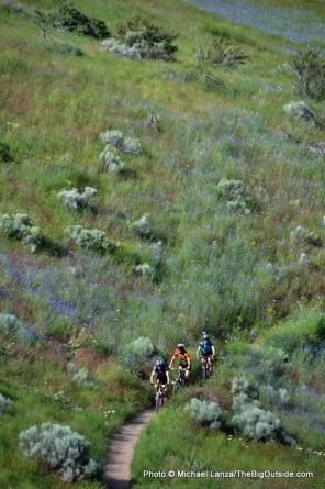 Ridge Crest Trail