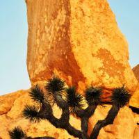 Headstone Rock.