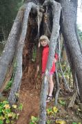 Alex in tree roots at Mosquito Creek campsite.