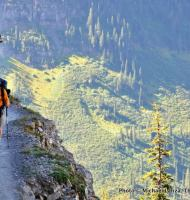 Gla4-113 Highline Trail, Glacier NP