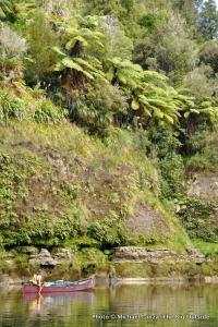 Whanganui River, day one.