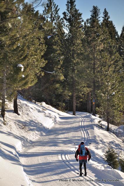 Skiing Ralph's Trail.