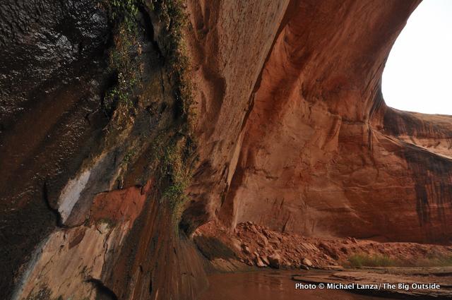 Huge undercut near Jacob Hamblin Arch, Coyote Gulch.
