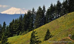 Mt. St. Helens seen from Dog Mountain.