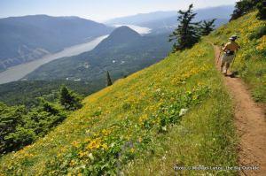Dog Mountain.