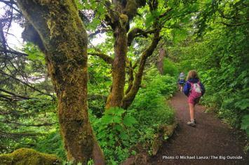 Dog Mountain Trail.