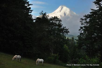 Mount Hood.