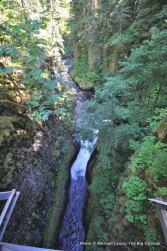 View from High Bridge, Eagle Creek Trail.