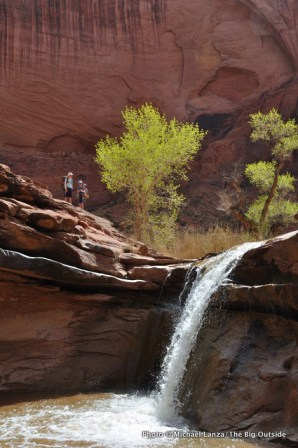 Waterfall in Coyote Gulch.