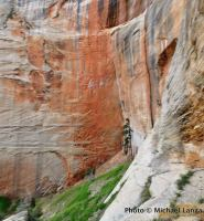 West Rim Trail, Zion National Park.