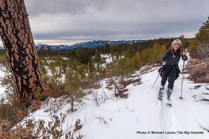 Wayout Trail, Boise Mountains.