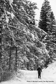 Beaver Trail, Boise Mountains.