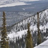 Skiing north of Bench Lakes.